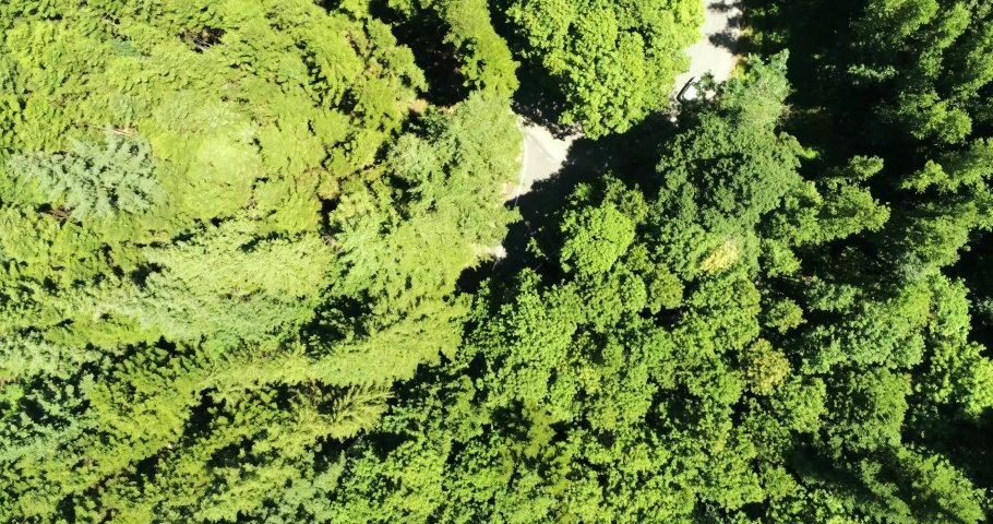 Aerial view of a road junction immersed in the mountain forest with cars passing through the streets | Shutterstock HD Video #1047830380