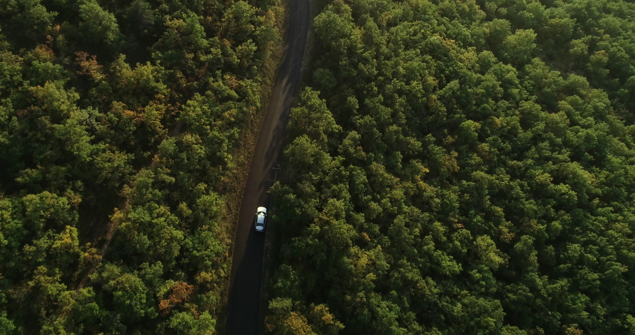 Millau, France - September 2019: Aerial top view of autumn green trees in forest background. Car driving along the forest road. AERIAL: Car driving through forest. From above view country road.