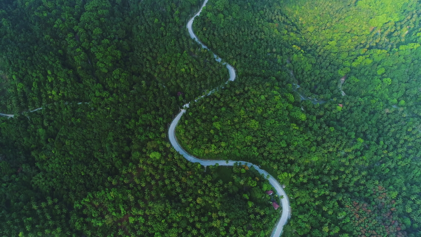 Deep Forest Tree Landscape Curved Road Aerial View. Epic Hill Chain Scenery Covered by Lush Green Jungle. Highway Go Through Asian Ecosystem Wildlife Habitat Natural Environment Concept Thailand 4K | Shutterstock HD Video #1047940294