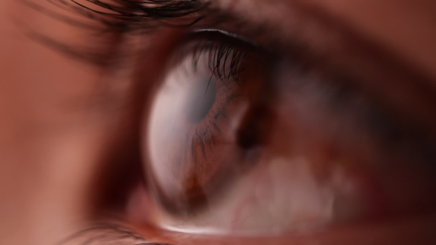 Close-up of brown eye blinking in Slow Motion. Young Woman is opening and closing her beautiful eye. | Shutterstock HD Video #1047946384