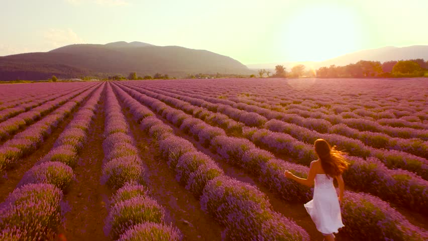 Happy Young Beautiful Woman Running Through Lavender Field White Dress Independence Happiness Freedom Joy Peace Concept Uhd 4K | Shutterstock HD Video #10482626