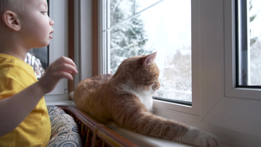 Child and pet at home. Red ginger tabby cat and little toddler boy looking out fo window watching falling snow. Domestic animal and kid friendship. Cozy scene, lifestyle.