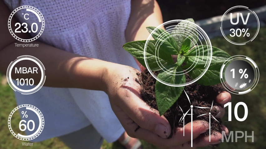 Smart digital agriculture technology by futuristic sensor data collection management by artificial intelligence to control quality of crop growth and harvest. Computer aided plantation grow concept. Royalty-Free Stock Footage #1048842712