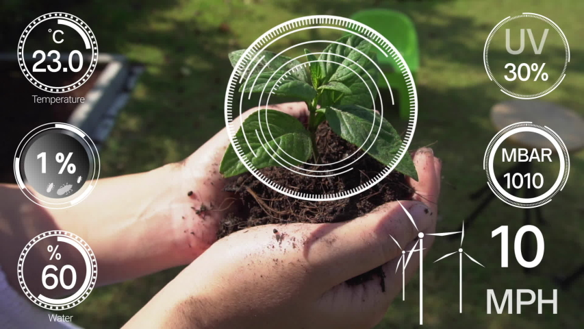 Smart digital agriculture technology by futuristic sensor data collection management by artificial intelligence to control quality of crop growth and harvest. Computer aided plantation grow concept. Royalty-Free Stock Footage #1048842715