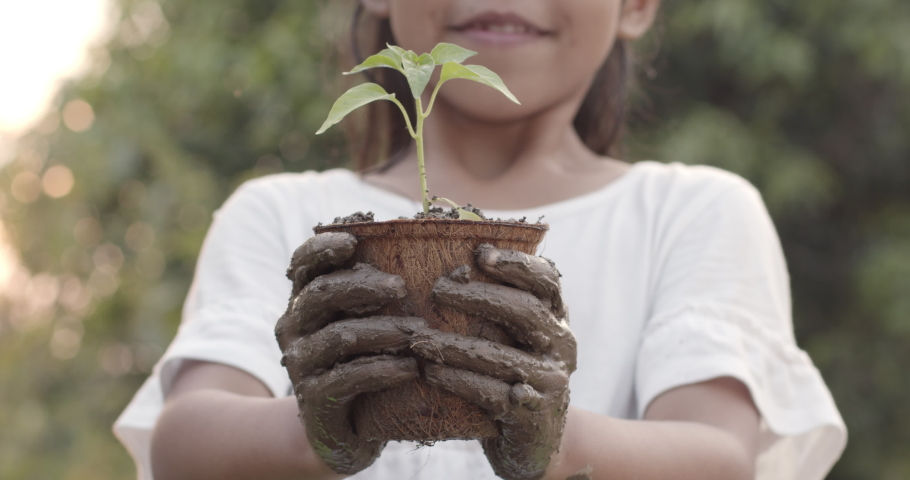 Asian child girl with mud dirty hands holding young seedlings in recycled fiber pots in the garden.Concept of child love in environmental conservation.Slow motion shot. | Shutterstock HD Video #1049084776
