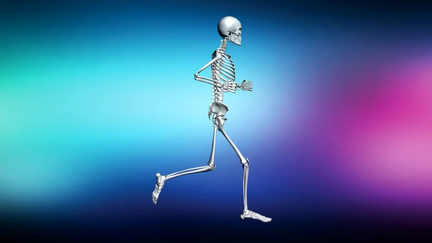 3D animation anatomical human running