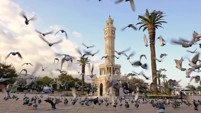 Flock of pigeons flying around the Izmir Clock Tower at the Konak Square in Izmir, Turkey. Slow motion | Shutterstock HD Video #1049462506
