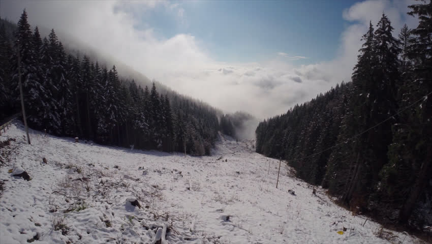 Aerial: first snow in the black forest / white trees  #10500875