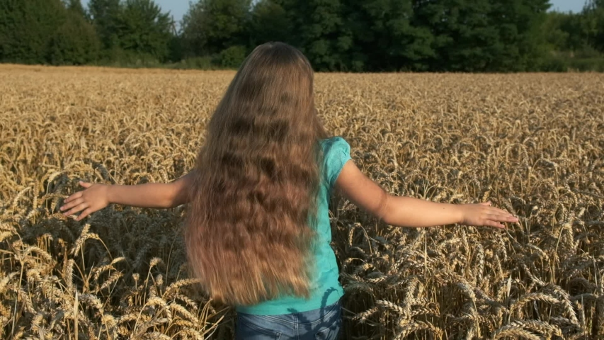 Little girl running cross the wheat field at sunset. Slow motion 120 fps. The concept of a happy family. Childhood dreams