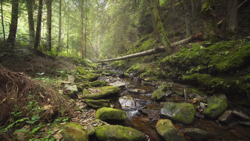 Peaceful stream flows around rocks and boulders in the wild and picturesque Carpathian Mountains of Ukraine. 4k Ultra HD video with nature sounds. | Shutterstock HD Video #1050773287
