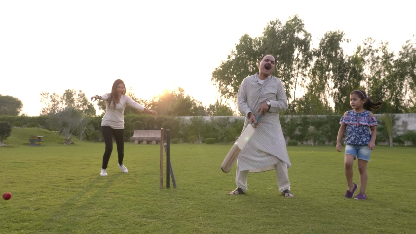 A grandfatherold elderly  fit man batting playing cricket disappoints when gets bowled out as the family celebrates celebrating. A happy family enjoying holiday together in the open field garden