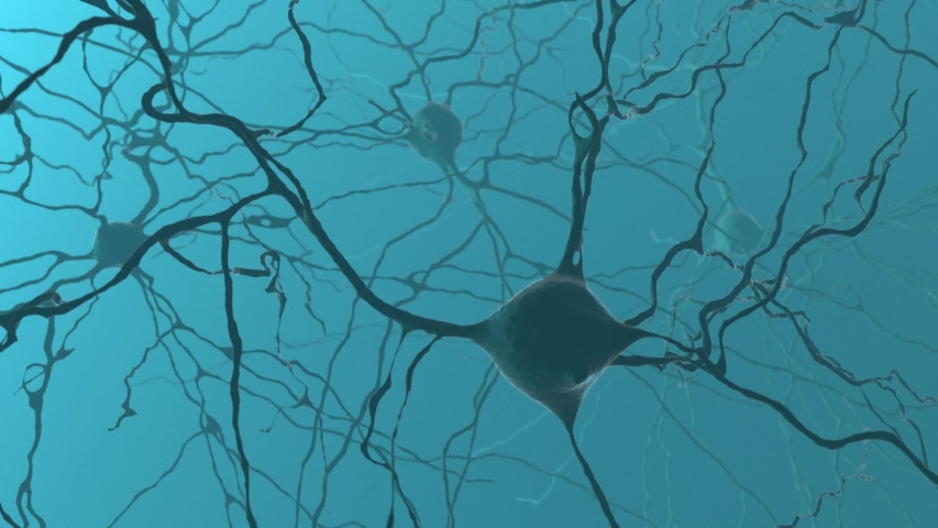 Neuron cluster signal transfer inside human brain | Shutterstock HD Video #1051257601