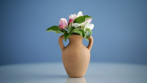 spring pink apple tree flowers in a clay vase