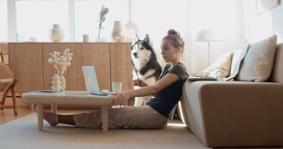 Caucasian female working from home, having a video work call, dog sits near her. Stay home, quarantine remote work. Shot on RED Dragon | Shutterstock HD Video #1051706371