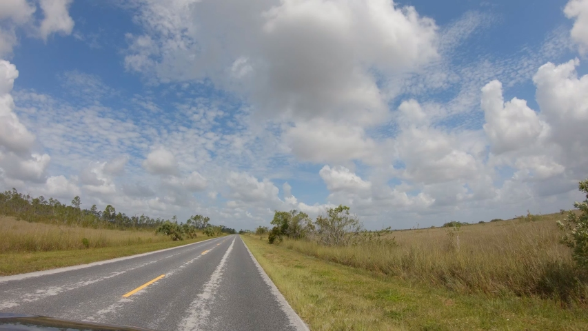 Time lapse car driving on the road in Everglades National Park in Florida, USA. Camera mounted on windshield, point of view of driver on empty road  | Shutterstock HD Video #1051795411