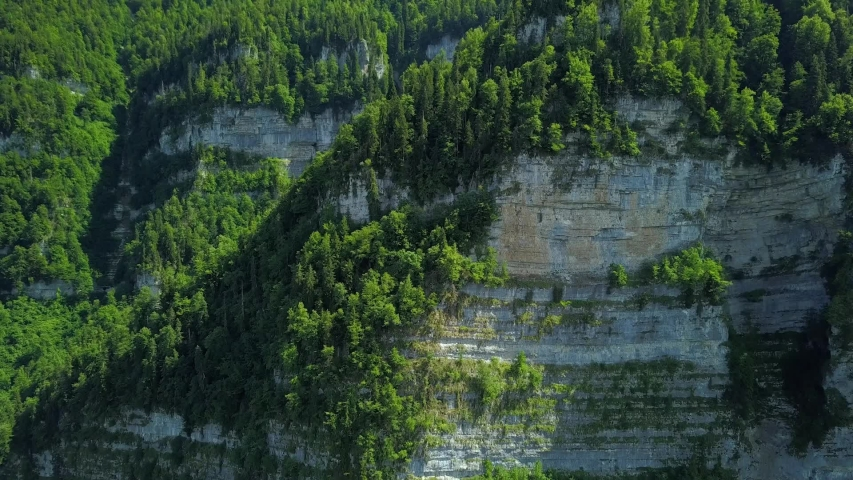 Aerial forward epic sheer ancient high cliffs rocks Kodor gorge. Canyon epic natural landscape Caucasus. Tops of mountain ranges covered spruce trees. Beautiful landmark Abkhazia. Fairytale alpine