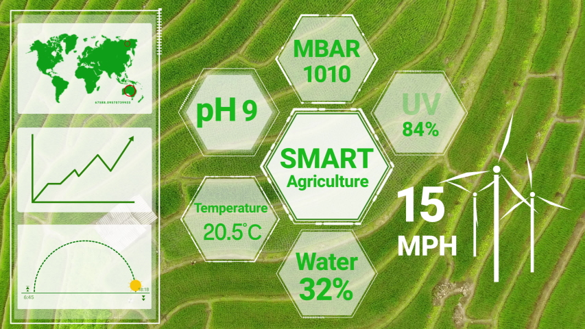 Smart digital agriculture technology by futuristic sensor data collection management by artificial intelligence to control quality of crop growth and harvest. Computer aided plantation grow concept. Royalty-Free Stock Footage #1052255506