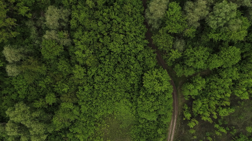 4K aerial drone shoot. Flying over a beautiful green forest in a rural landscape. Top view of trees in forest background. Drone photography. Forest river, rural road. | Shutterstock HD Video #1052609069