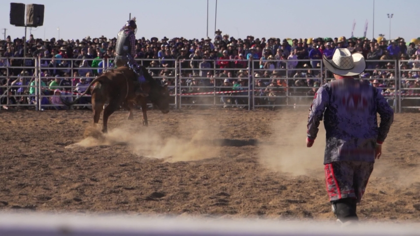 Modern Cowboy in a Rodeo. Cowboy wearing a helmet is competing in a bull riding event at an Australian country rodeo