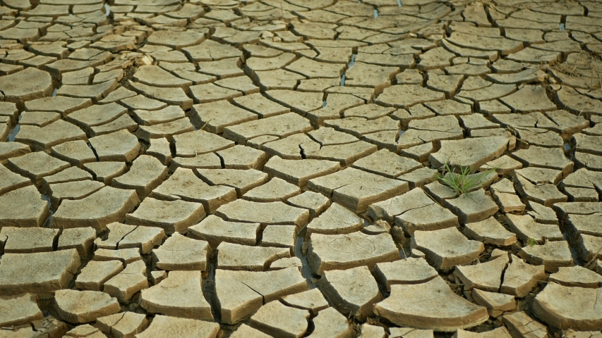Drought cracked pond wetland, swamp very drying up the soil crust earth climate change, environmental disaster and earth cracks very, death for plants and animals, soil dry degradation | Shutterstock HD Video #1052685326