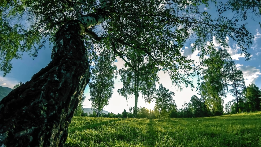 Mountain meadow time-lapse at the summer or autumn time. Wild nature and rural field. Clouds, trees, green grass and sun rays on horizont. Motorised slider dolly movement.   Shutterstock HD Video #1052708690
