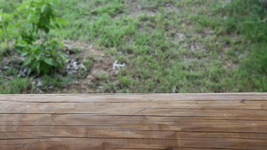 Footage of toy rubber chicken  | Shutterstock HD Video #1052731691
