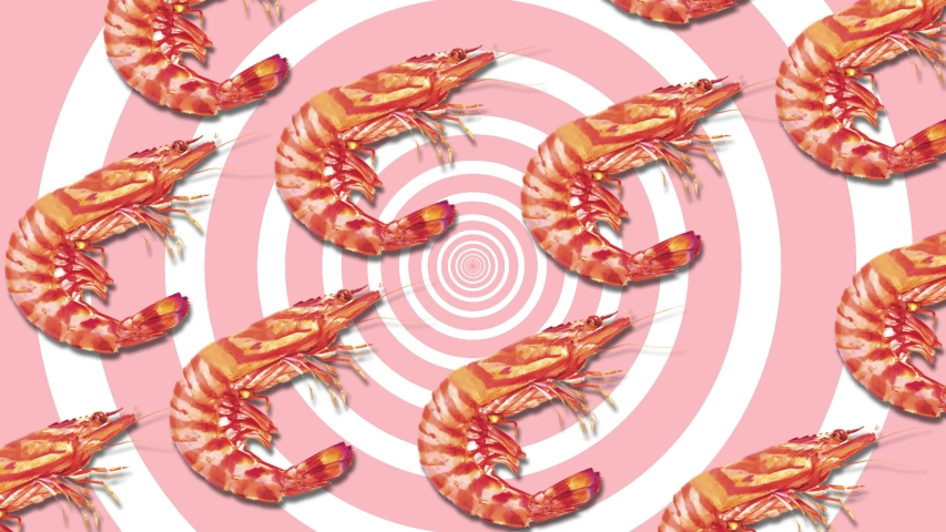 Shrimp, abstraction, background, seafood screensaver, delicacy on a pastel delicate pink background | Shutterstock HD Video #1052732261