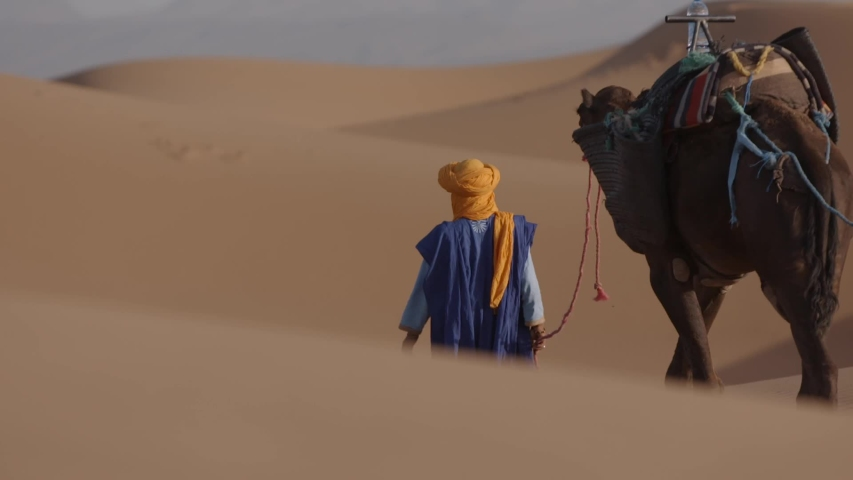 Sahara desert, Morocco Nomad is walking with his camel through the dunes of the desert. Beautiful sand. The male lives as nomad in the desert.