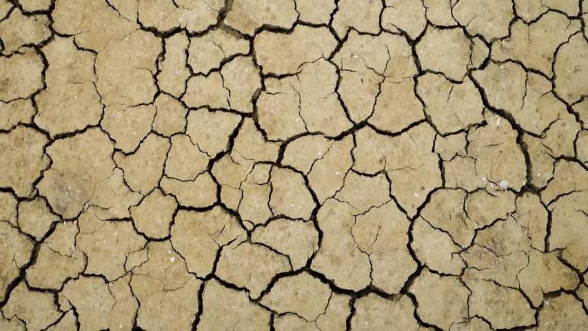 Dry Сracked Earth Close up Background. Drought Due To Global Warming and Lack of Rain. Camera Panning from Earth To Landscape   Shutterstock HD Video #1052757293