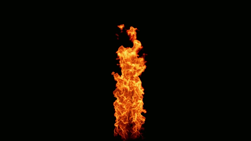 Fire Flames Looped Torch Ignited Burning. Real Flames Ignited On A Black Background. Real Fire. Transparent Background Fire Visual Effect.