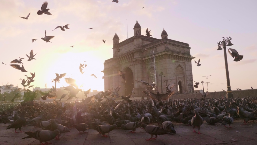 Shot of empty Gateway India with pigeons flying in the foreground and morning sun rising in the background during lockdown amid coronavirus/ COVID19 pandemic/ epidemic, Mumbai, India Royalty-Free Stock Footage #1052948438