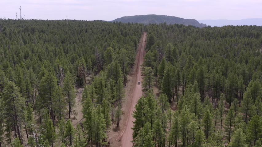 4K aerial above a vehicle driving down a dirt road in the green forest near Flagstaff, Arizona with a Sedona mountain in the background.