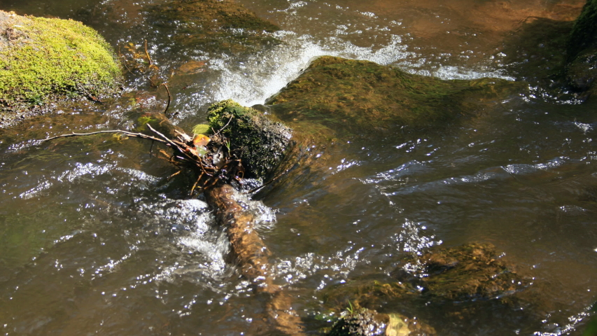 Time lapse close up of a water running in a small stream with moss covered stones and debris in spring light, UK. | Shutterstock HD Video #1052971082