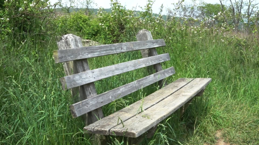 Rustic wooden bench, Sky Meadows State Park in Paris, Virginia. Peaceful, scenic background with long, green grass and white flowers gently blowing with the breeze in a serene and tranquil manner.