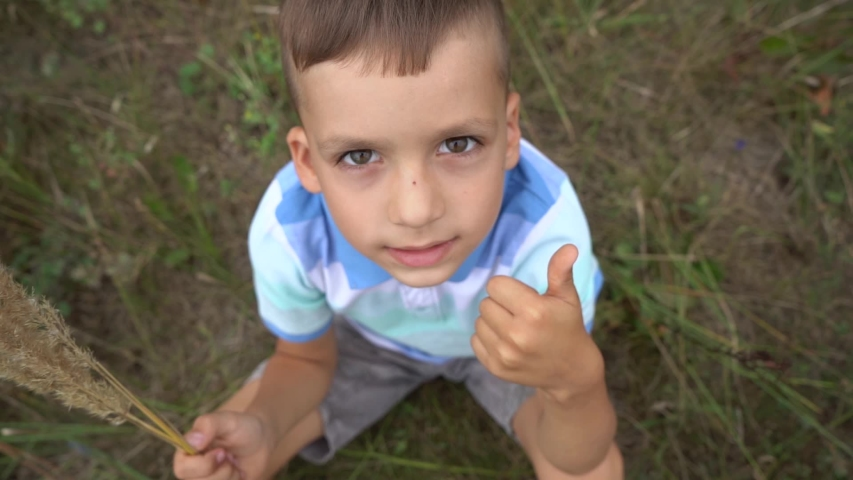 Closeup top view video portrait of cute funny little boy sitting on grass outside. Child of five years old gives thumb up looking at camera.