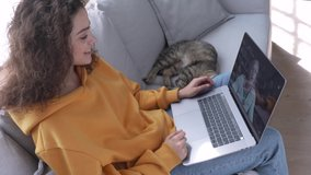 Smiling young hispanic girl sit on couch at home play with cat hold laptop computer talk by webcam video conference call chatting with distance friend teacher virtual meet online date on pc screen.