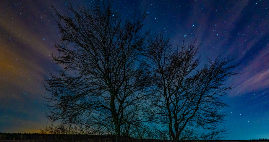 Motion of stars in the night sky against a tree, beautiful night landscape, time lapse, 4k | Shutterstock HD Video #1053139328