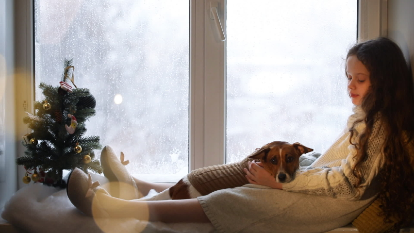 Little girl embracing her puppy dog, sitting on window and waiting Christmas. | Shutterstock HD Video #1053151277