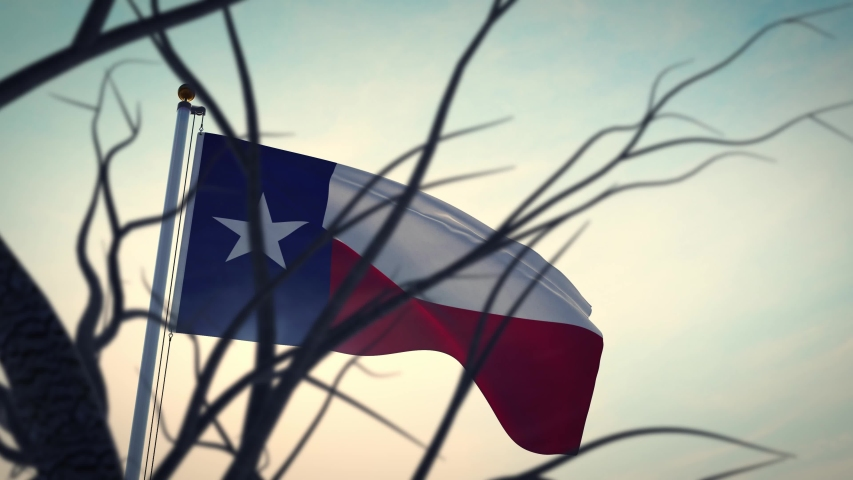 Texas flag waving in the lone star state. Patriotic banner and american emblem - video animation
