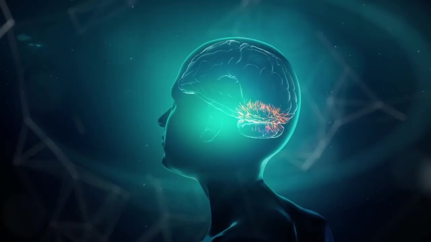 Neurons Transmit Messages In The Brain. Neurons are the cells that pass chemical and electrical signals along the pathways in the brain. | Shutterstock HD Video #1053205334