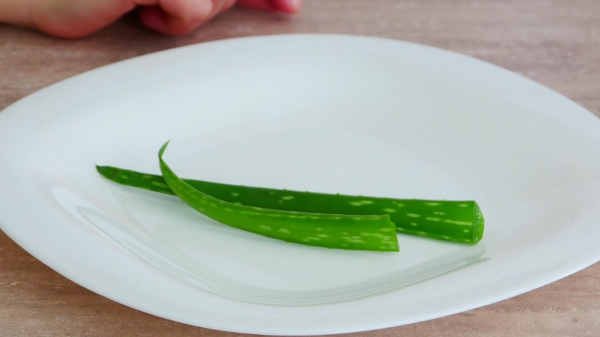 Hand putting aloe vera leaves | Shutterstock HD Video #1053213008