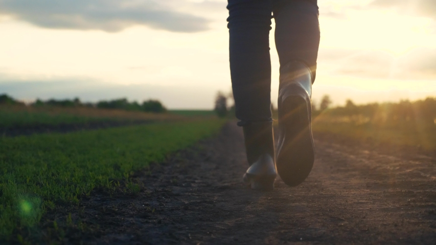 Agriculture. girl farmer in rubber boots walks along a country road near a green field lifestyle of wheat grass at sunset sunlight.  | Shutterstock HD Video #1053241145