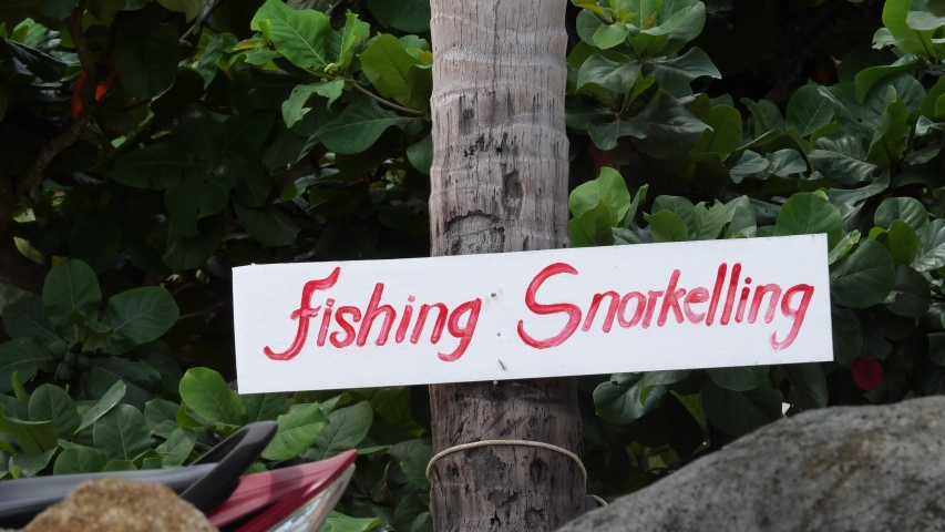 Wooden plate with text fishing snorkelling on beach. Signpost on tropical island. Green leaves tree background | Shutterstock HD Video #1053262526