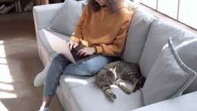 Young hispanic latin teen girl student, young woman remote worker using laptop working studying online from home office sit on sofa with cute cat pet doing freelance distance work in sunny cozy flat.