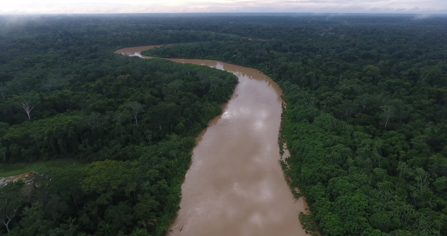 Large and Beautiful Amazon Rainforest River Surrounded by Pristine Luxuriant Green Jungle