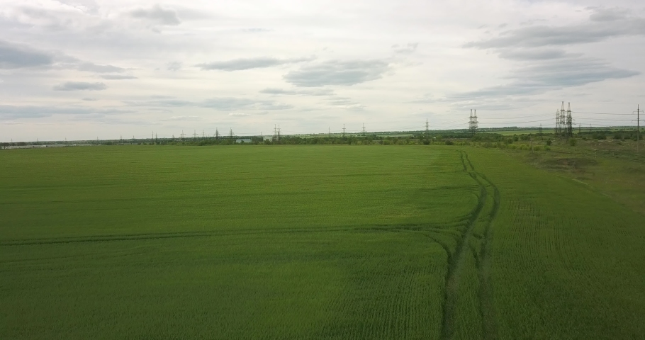 A large green field of wheat from a height | Shutterstock HD Video #1053395876