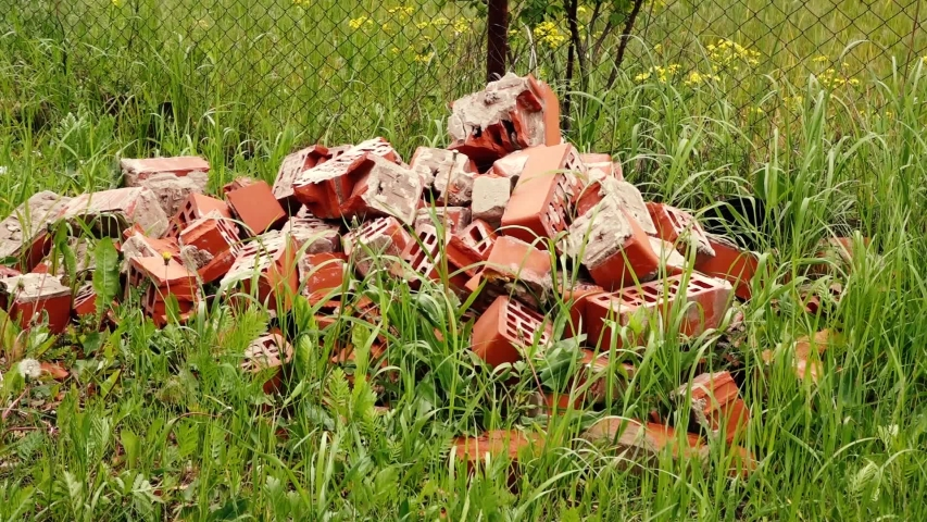 A pile of red old bricks in the grass | Shutterstock HD Video #1053402893
