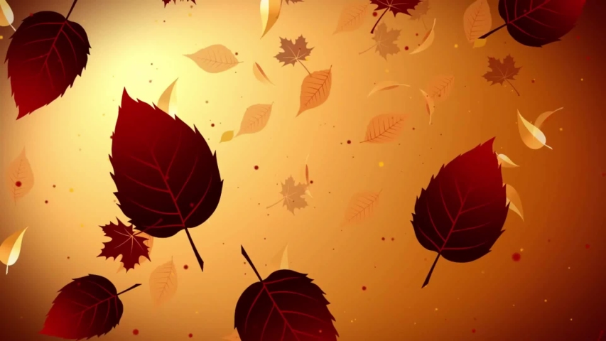 Golden Yellow Leaves Falling In A Brown Background. Animation of fall leaves with different colors. | Shutterstock HD Video #1053413711
