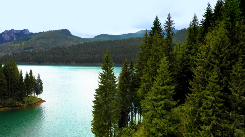 Turquoise water in a mountain forest lake with pine trees. Aerial view of blue lake and green forests. View on the lake between mountain forest. Over crystal clear mountain lake water. Fresh water