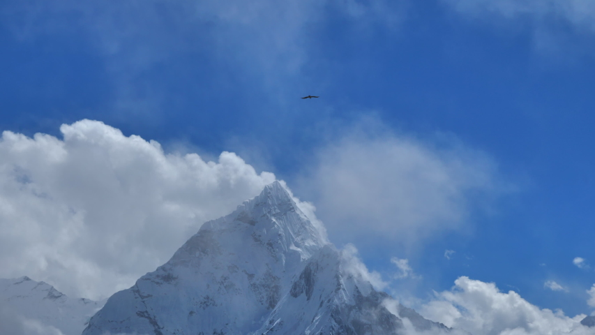 Eagle in the clouds against the backdrop of snowy Ama Dablam,  mountain of Nepal | Shutterstock HD Video #1053464294